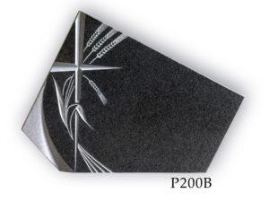 P200B