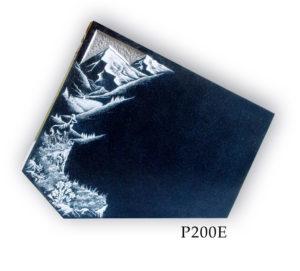 P200E